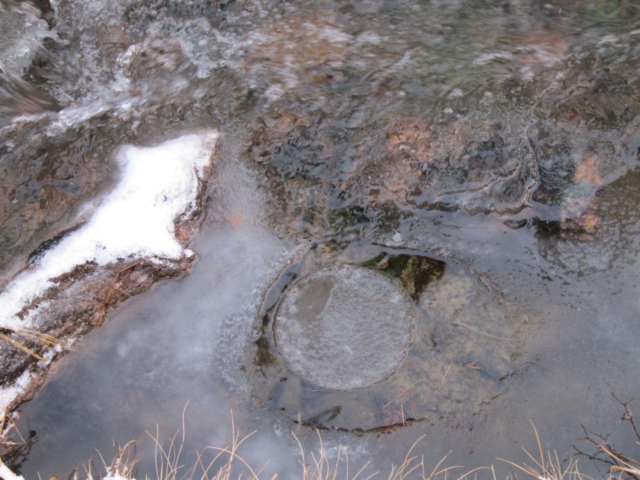 pyörivä jääkiekko purossa